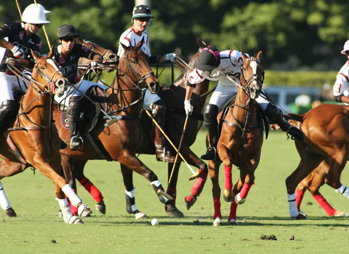 US Open Polo Championship Match